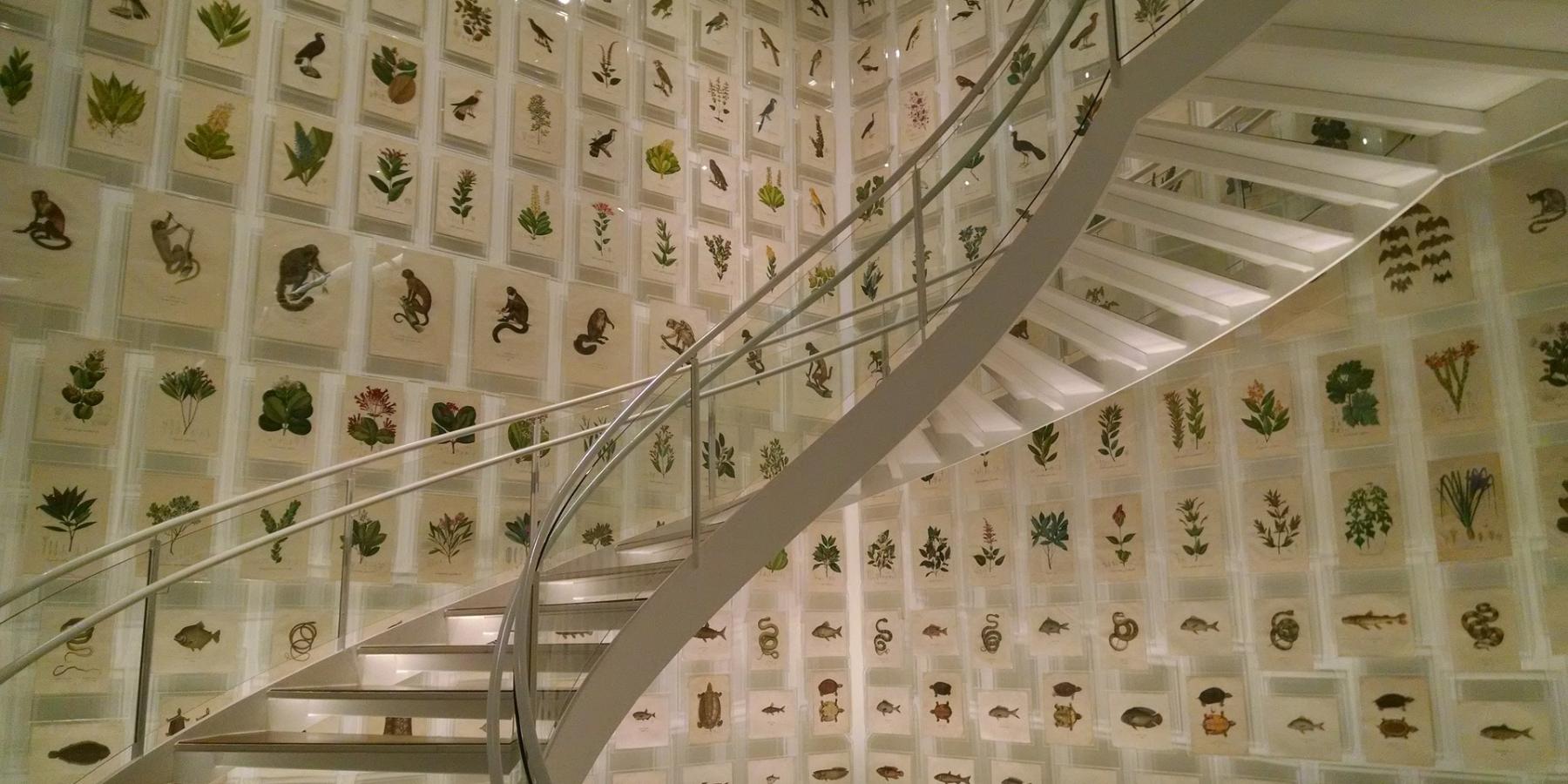 Appendere Quadri Su Scale come disporre i quadri sulla scala: idee e spunti | speziale